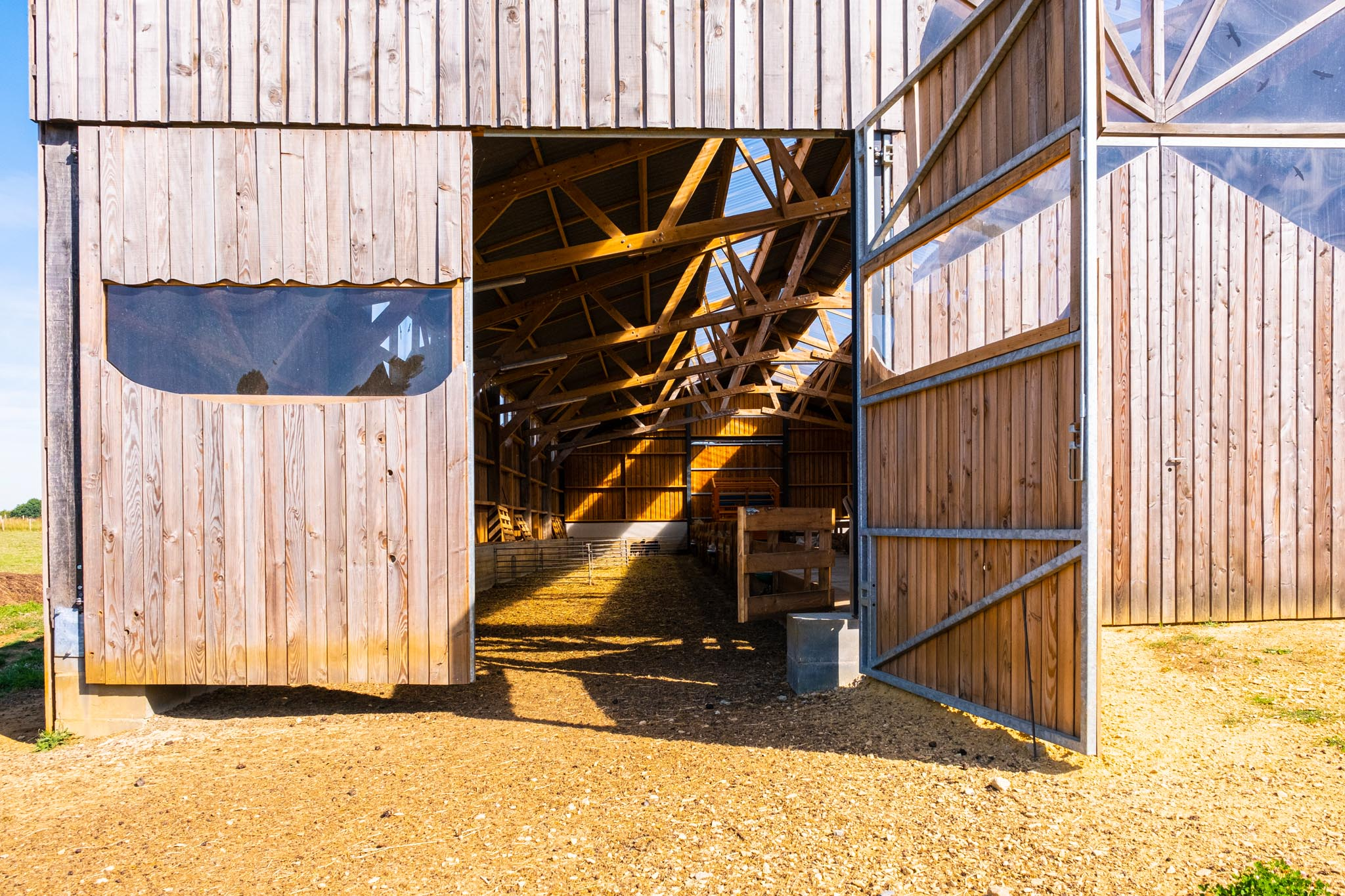 Agrinew_DSF3249_007