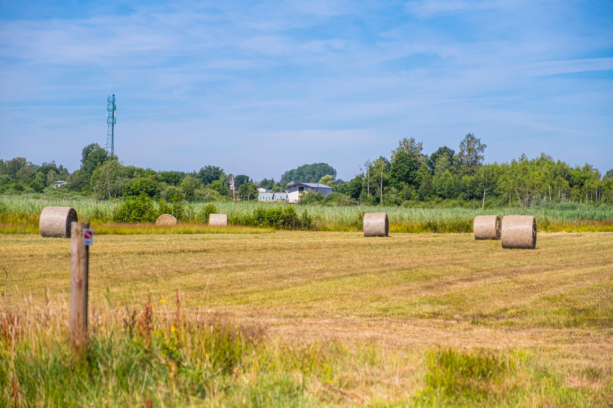 Agrinew_DSF3289_040
